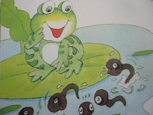 小青蛙找妈妈故事_培乐多彩泥讲故事小青蛙找妈妈亲子游戏亲子